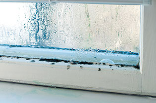 condensation mold window